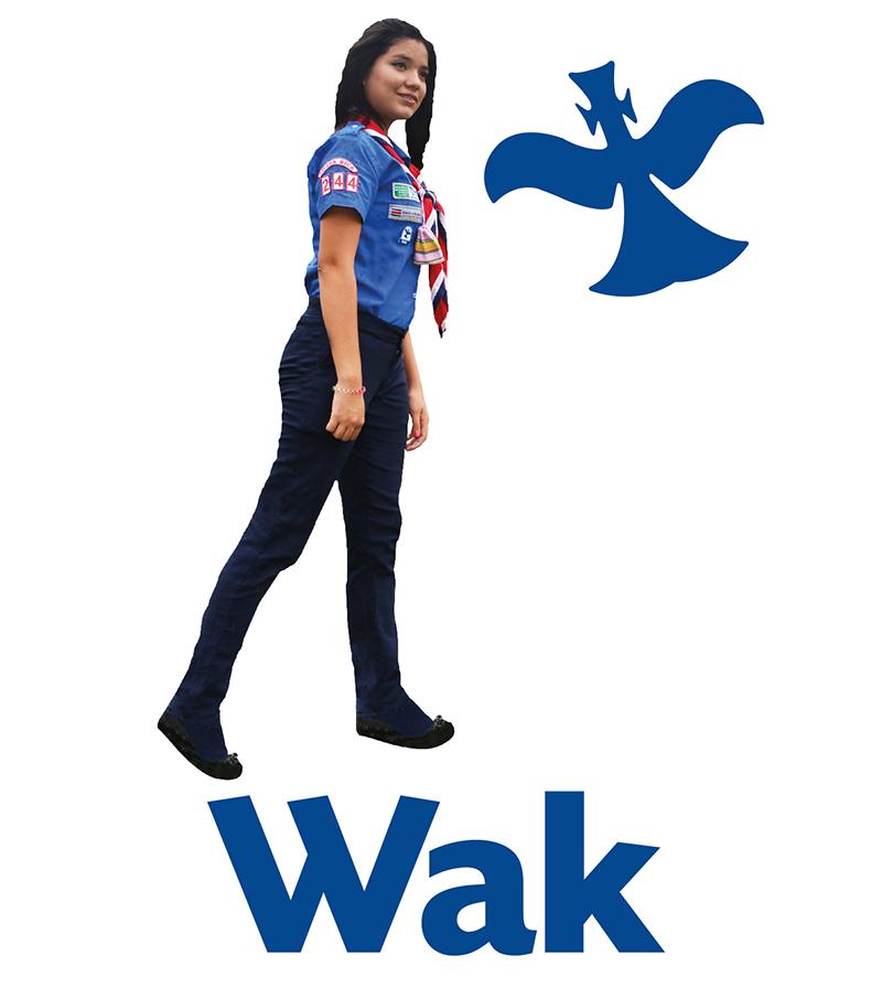 Web-2015-wak-compressor