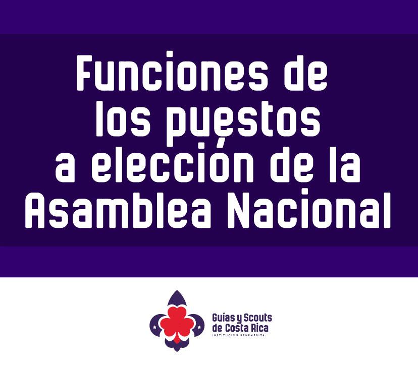 Funciones de los puestos a elección en Asamblea Nacional 2019